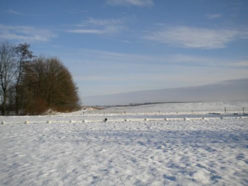sneeuwdres